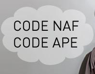 code naf et code ape