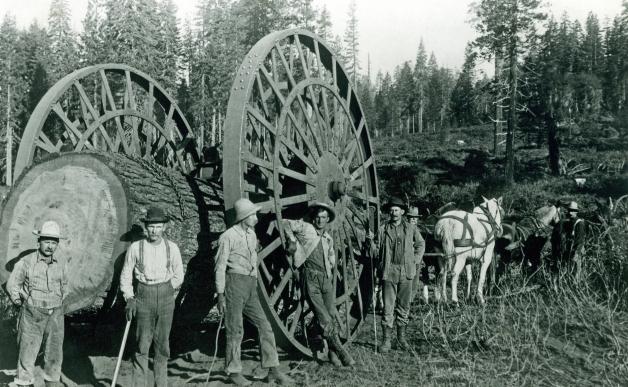 Vieille photo représentant des bûcherons en habits de travail de l'époque