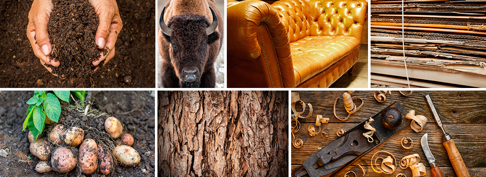 Erde-Leder-Holz
